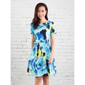 Abstract Rose Print Dress - D36744