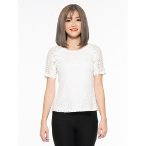 White Lace Top - T37574
